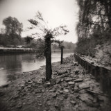 2011 - Autumn at Twickenham - Scan-110505-0023.jpg