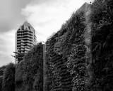 2011 - Singapore - near IR - L1021291