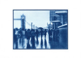 2012 - February - cyanotype002