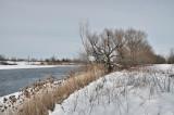 Grande rivière - Parc des Iles-de-Boucherville