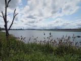 Montréal et son fleuve