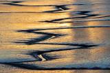 Mudflat Rivulets