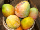 Bucketload of Mangoes