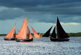 Galway Hookers Racing