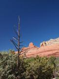 Sedona, Arizona and area