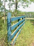 Fence 9982