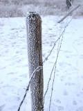 Fence 1204218