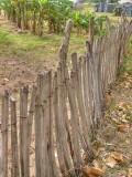 Fence 2154843