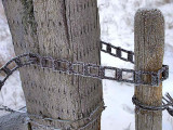 Fence 4217