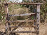 Fence 2195288