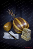 Old object:,a big lute,small mandolin,books and ancient telescope