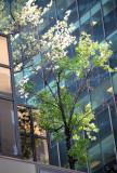NYC APR2011 (10).jpg