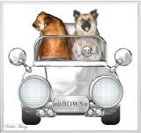 Brown's Car