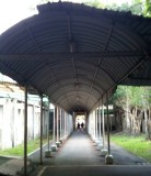 BackYard of Sungshan Hospital