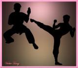 Pratice of Kung Fu and Taekwondo