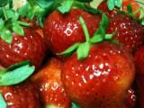The Organic Strawberries