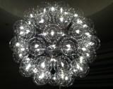 The Light Bulbs