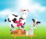 The hungry calf: Happy Mother's Day
