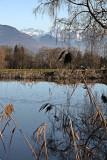 A pond close to Rain
