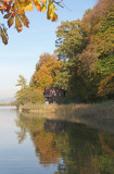Rotsee in autumn