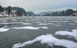 Rotsee is frozen