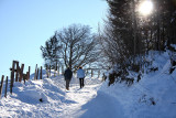 Early Christmas day walk