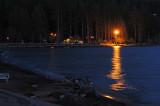 Canda Geese at Night
