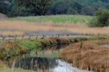 Rush Creek Reflections