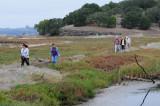 Crossing the Levee