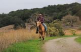 Riding Towards Us