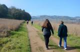 Sunny Trail Back