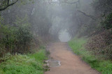 Path Through the Hole