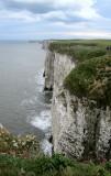 RSPB Bempton Cliffs Reserve