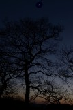 moon, venus, jupiter & afterglow