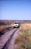 Road to Chobe