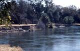 Okavango river at Shakawe Fishing Center