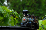 A Garden Railroad