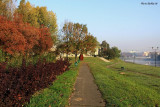 Autumn by Vistula River