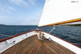 Towards the open sea