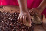 Traditional Cocoa Production: Removing the hard shells