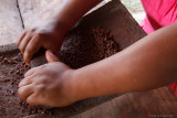 Traditional Cocoa Production: Grinding the heart of the bean