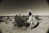 IMG_5201 (Desert Wild)