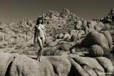 IMG_6870 (Tame The Desert)