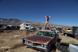 IMG_5746 (Queen Of The Junkyard)
