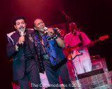 commodores_ac_taj-174.jpg