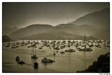 07 Marina Cove.jpg
