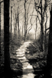 Path Revisited with Pinhole