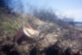 Canoe at Bayside