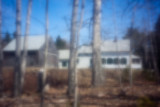 House and Barn Through Trees