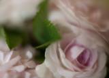 Tea Roses in a Vase #1